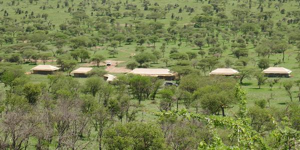 pure safaris camp
